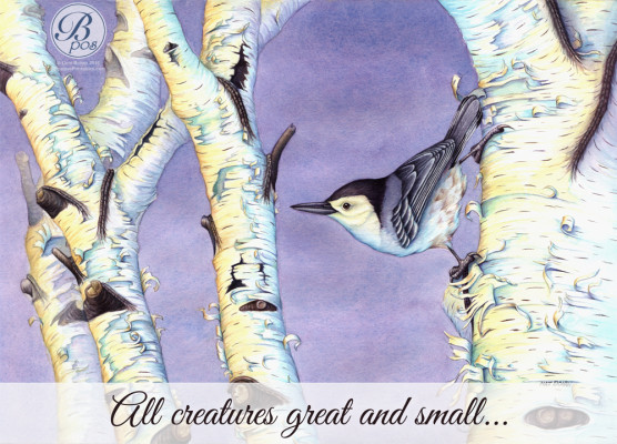 """All creatures great and small…"""